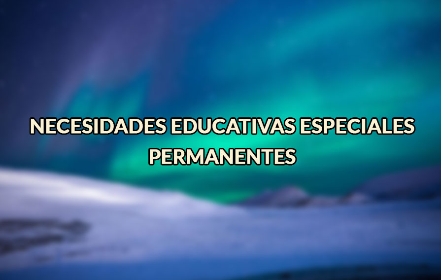 necesidades educativas especiales permanentes
