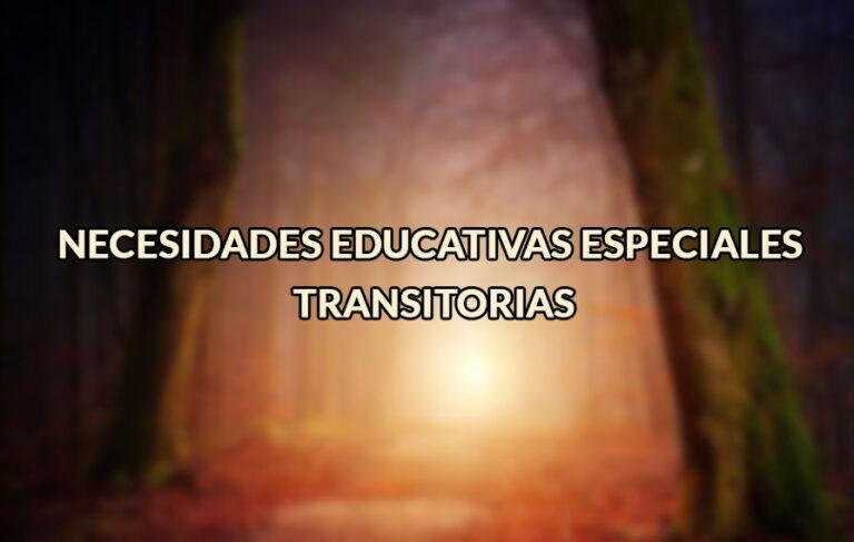 Necesidades Educativas Especiales Transitorias